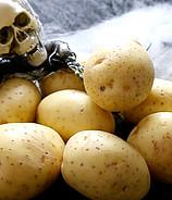 Halloween: Grusel-Snacks mit Kartoffeln
