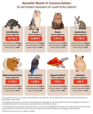 So viel kosten Haustiere